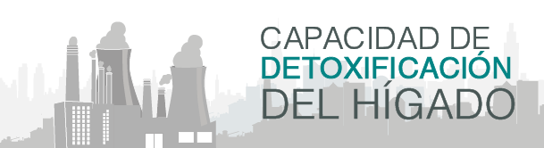 capacidad_de_detoxificacic3b3n_del_hc3adgado-5654307