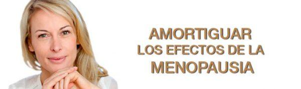 amortiguar_la_menopausia-9082297