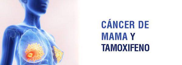 cancer_de_mama_y_tamoxifeno-3236951