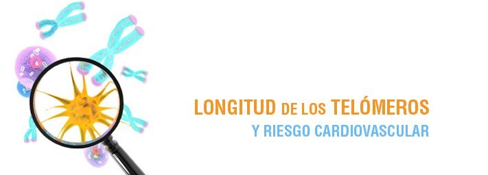 longitud_telomeros-7091914