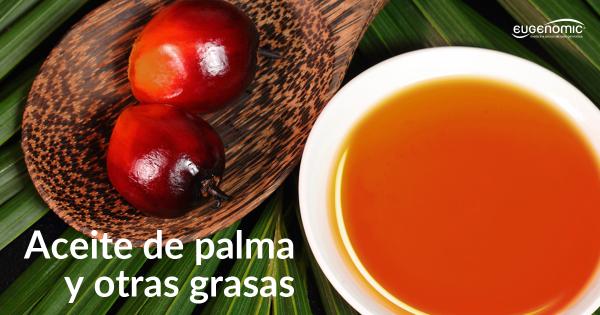 aceite-de-palma-y-otras-grasas-600x315-9122334