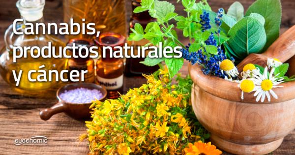 cannabis-productos-naturales-cancer-600x315-8552001
