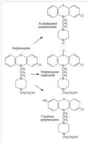 perfenazina-9589865