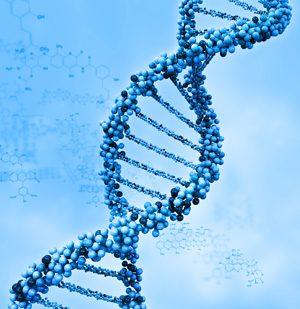 genomica-7246341