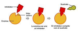 inhibidor-7992982