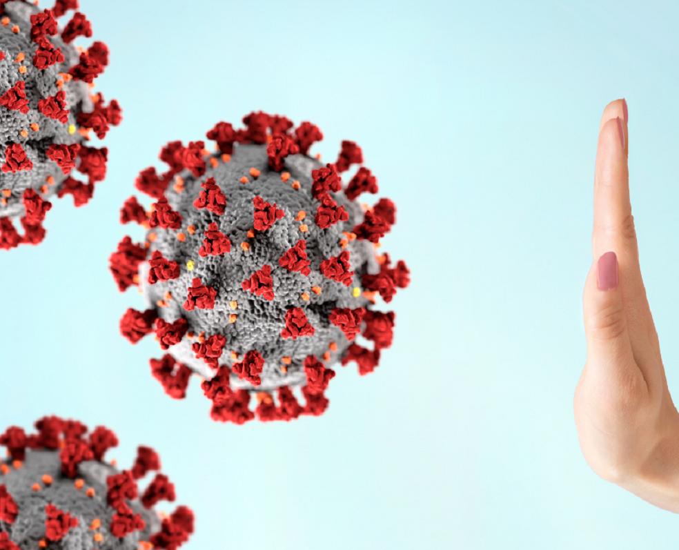 Tipaje Inmunolinfocitario ILMI cómo interpretarlo-EUGENOMIC